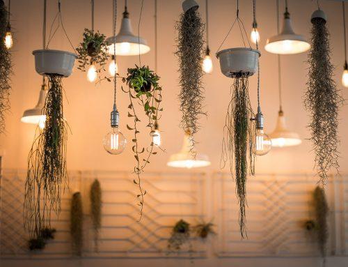 Mit LED-Lampen bares Geld sparen
