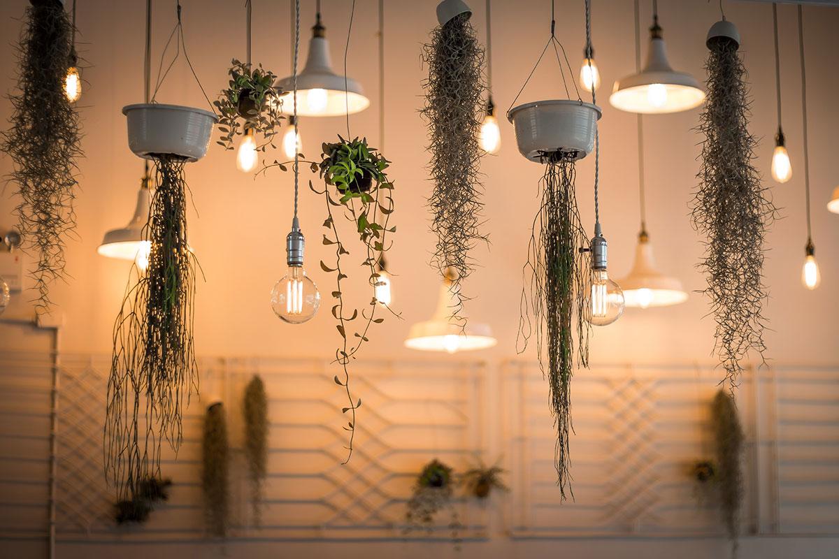 Mit LED-Lampen bares Geld sparen - firmenwebseiten.at ...